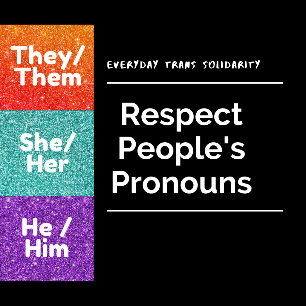 Everyday Trans Solidarity image by Charlie, and trans author, Kes Otter Lieffe. Text reads: Respect people's pronouns. They/them, she/her, he/him.