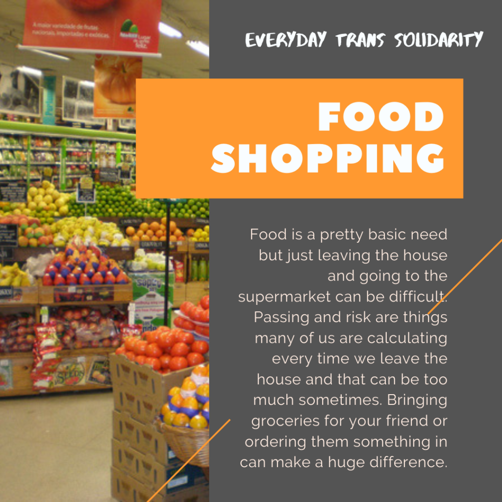 Everyday Trans Solidarity image by Charlie, and trans author, Kes Otter Lieffe. Text reads: Food shopping. Food is a pretty basic need but just leaving the house can be difficult. Passing and risk are things many of us are calculating every time we leave the house and that can be too much sometimes. Bringing groceries for your friend or ordering them something in can make a huge difference.