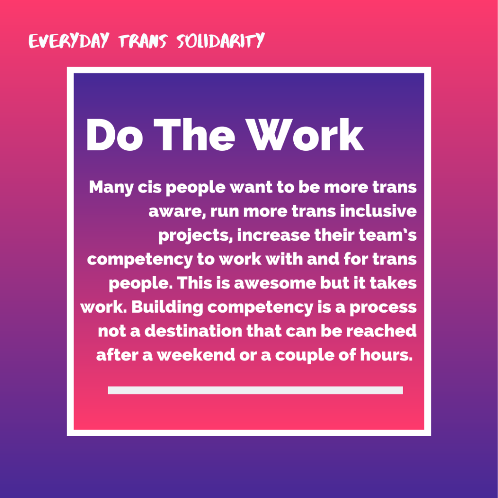 Everyday Trans Solidarity image by Charlie, and trans author, Kes Otter Lieffe. Text reads: Do the work. Many cis people want to be more trans aware, run more trans-inclusive projects, increase their team's competency to work with and for trans people. This is awesome but it takes work. Building competency is a process not a destination that can be reached after a weekend or a couple of hours.