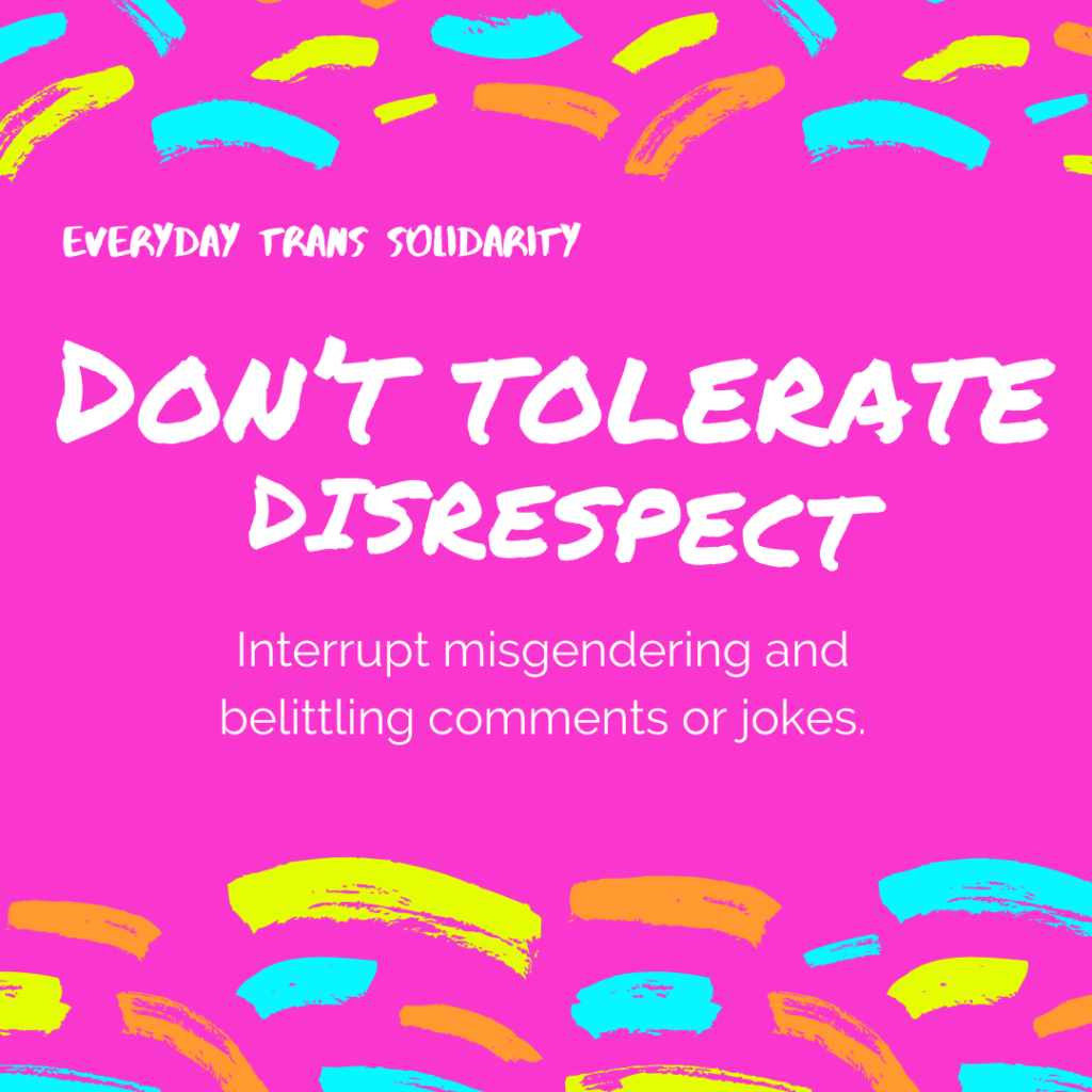 Everyday Trans Solidarity image by Charlie, and trans author, Kes Otter Lieffe. Text reads: Don't tolerate disrespect. Interrupt misgendering and belittling comments or jokes.