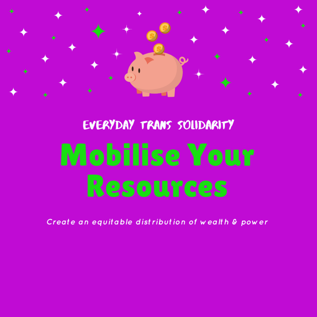 Everyday Trans Solidarity image by Charlie, and trans author, Kes Otter Lieffe. Text reads: Mobilise your resources. Create an equitable distribution of wealth and power.