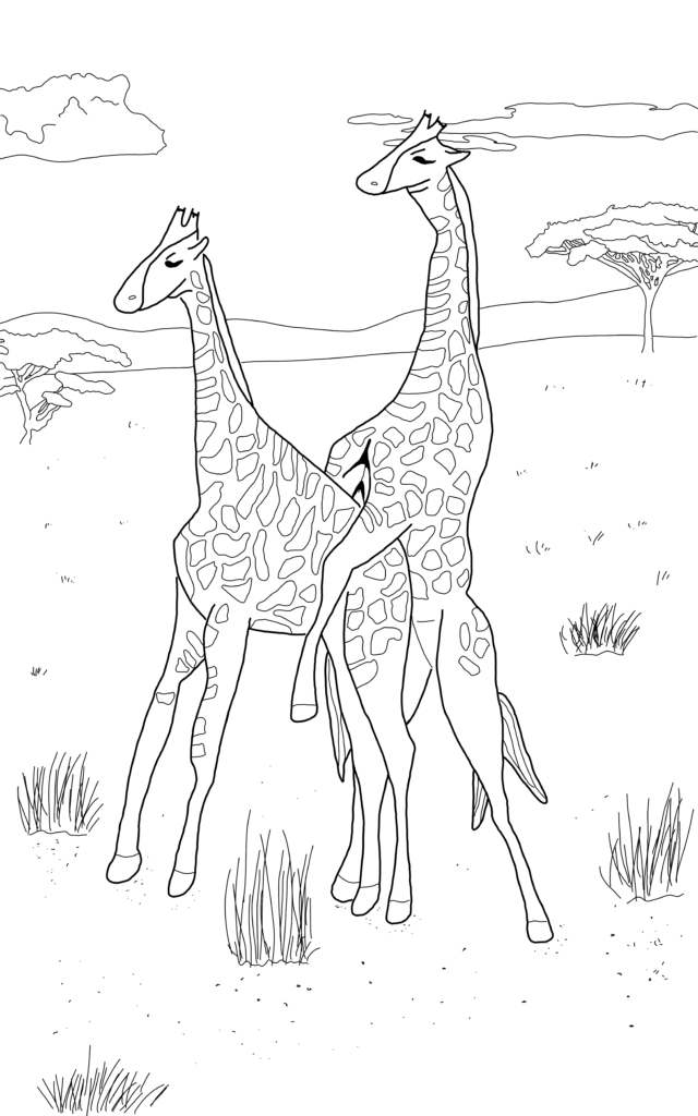 Gay Giraffes illustration from Queer Animals Coloring zine. Written by author of trans speculative fiction, Kes Otter Lieffe. Illustrated by Anja Van Geert. This coloring zine celebrates the diversity of animals and our beautiful queer communities.
