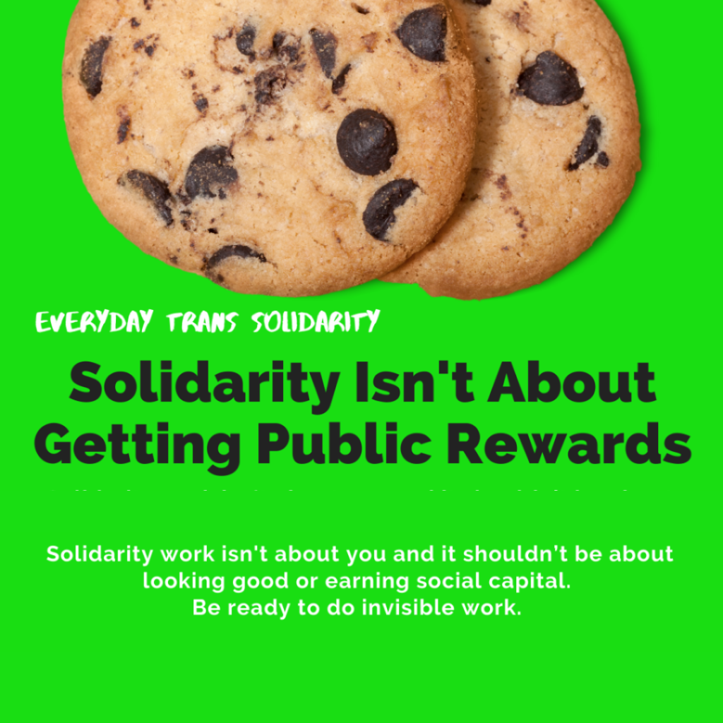 Everyday Trans Solidarity image by Charlie, and trans author, Kes Otter Lieffe. Text reads: Solidarity isn't about getting public rewards. Solidarity work isn't about you and it shouldn't be about looking good or earning social capital. Be ready to do invisible work.